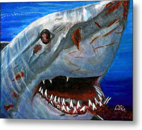 Happy Shark Metal Print by BlondeRoots Productions