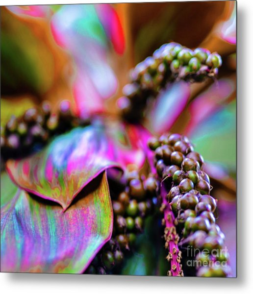 Hawaii Plants And Flowers Metal Print