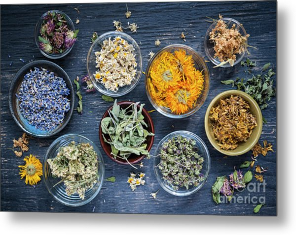 Metal Print featuring the photograph Herbs by Elena Elisseeva