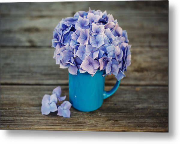 Hortensia Flowers Metal Print