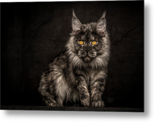 Hunting Mode Metal Print