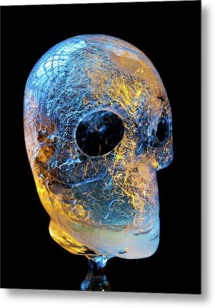 Ice Skull Metal Print
