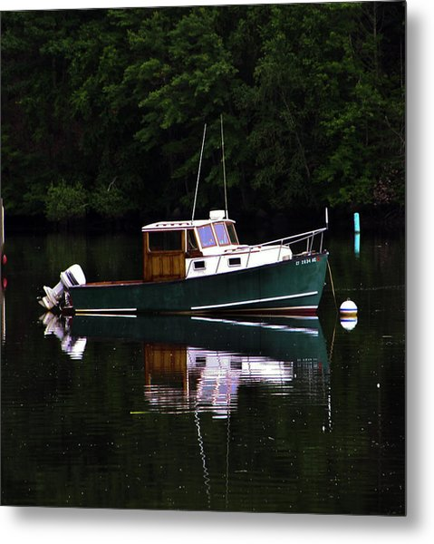 In The Cove Metal Print