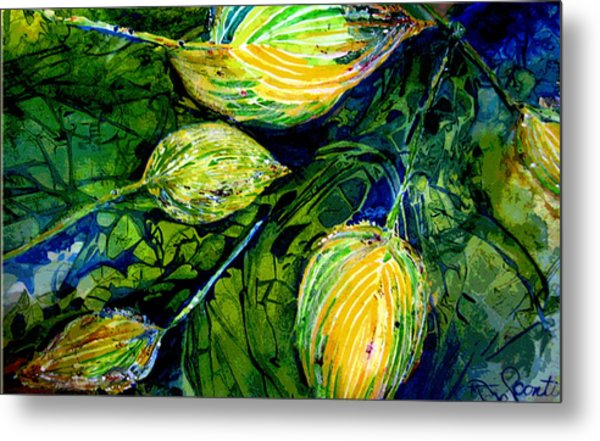 Indriel Blue Hosta Metal Print by Mary Sonya  Conti