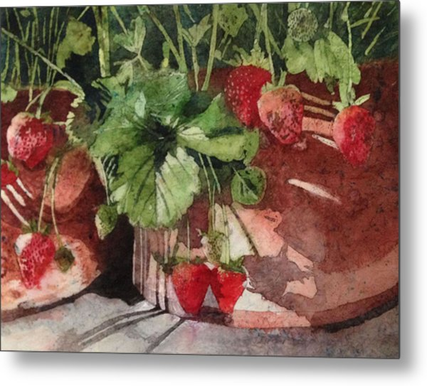 It's Berry Season Metal Print