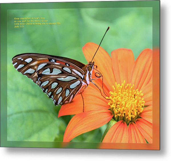 Metal Print featuring the photograph Jude 1 21 by Dawn Currie
