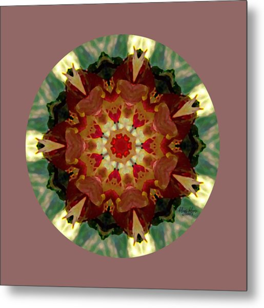 Kaleidoscope - Warm And Cool Colors Metal Print