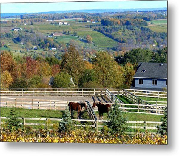 Keuka Lake Metal Print