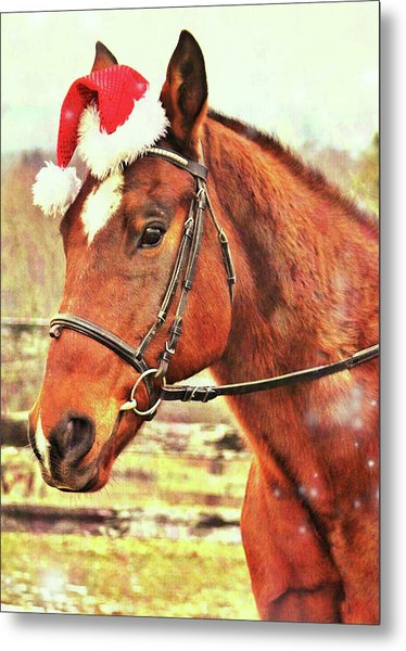 Kirby's Merry Christmas Wish Metal Print by JAMART Photography