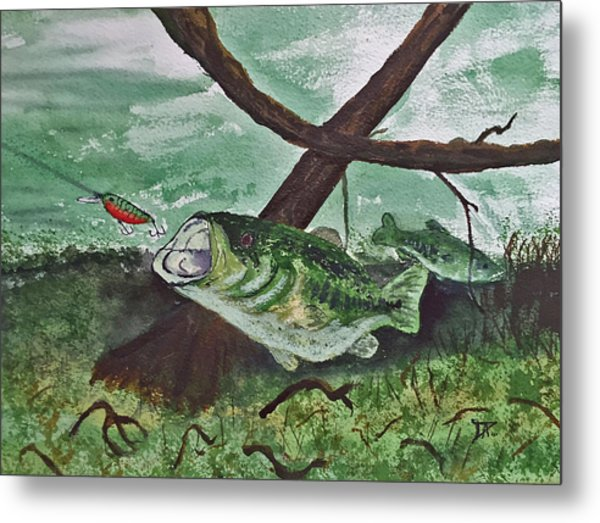 Largemouth Bass Metal Print