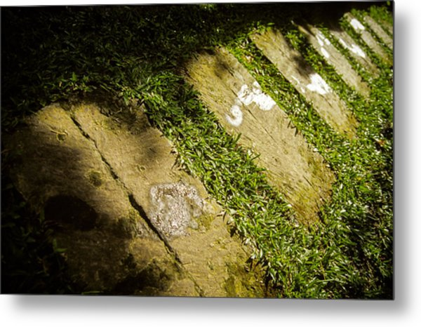 Light Footsteps In The Garden Metal Print