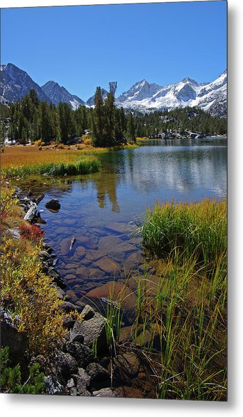 Little Lakes Valley 3 Metal Print