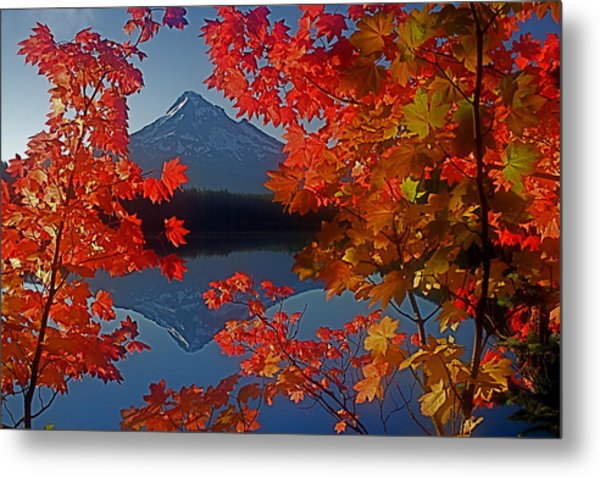 Lost Lake Autumn Metal Print