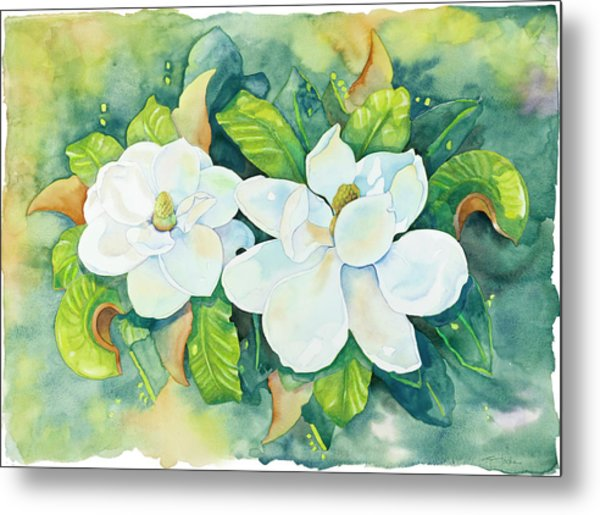 Magnolias Metal Print by Cathy Locke