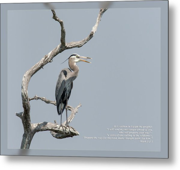 Metal Print featuring the photograph Mark 1 2-3 by Dawn Currie