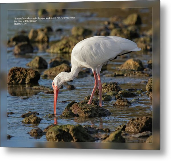 Metal Print featuring the photograph Matthew 5 6 by Dawn Currie