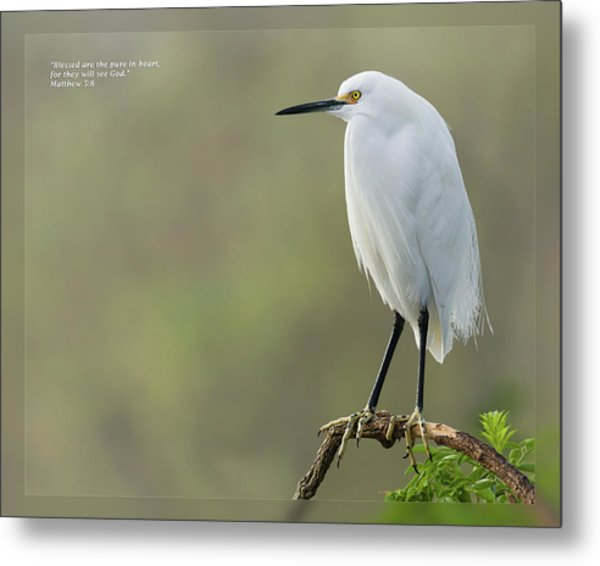 Metal Print featuring the photograph Matthew 5 8 by Dawn Currie