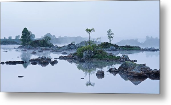 Mist And Trees Metal Print