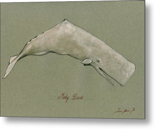 Moby Dick The White Sperm Whale  Metal Print