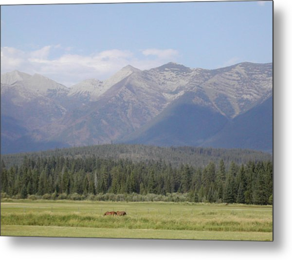 Montana Mountains Metal Print by Lisa Patti Konkol
