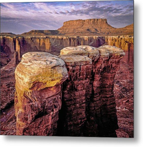 Monument Basin, Canyonlands Metal Print