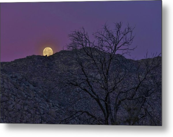 Moon Set At Sunrise Metal Print