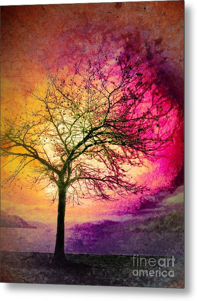 Morning Fire Metal Print