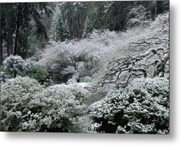 Morning Snow In The Garden Metal Print