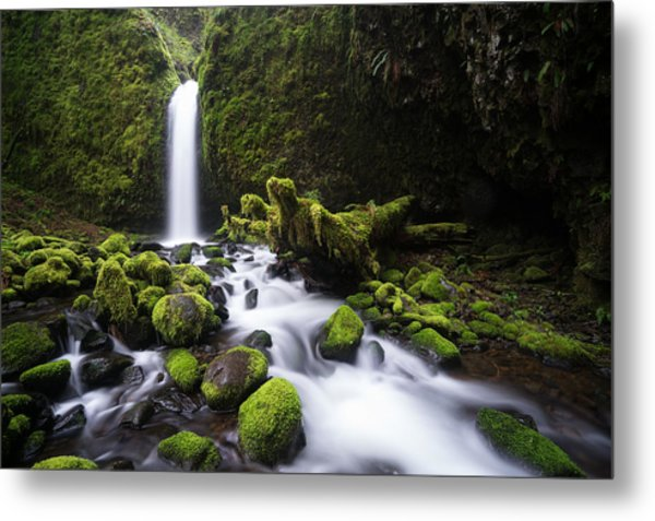 Mossy Grotto Metal Print