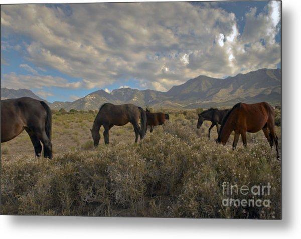 Nevada Metal Print by Glenn Vidal
