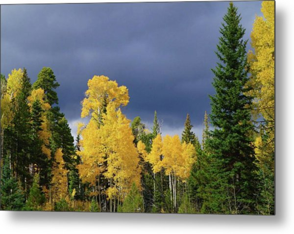 Metal Print featuring the photograph North Rim Fall  by Broderick Delaney