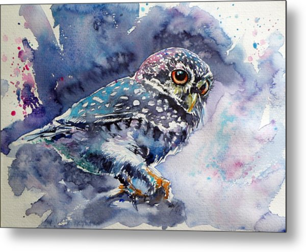 Owl At Night Metal Print