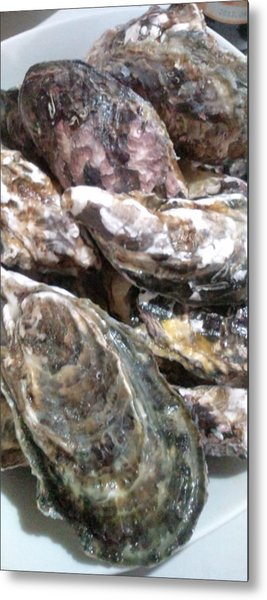 Oyster  Metal Print