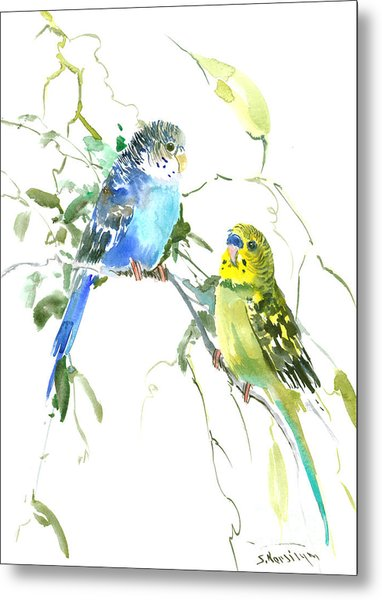 Parakeets Metal Print
