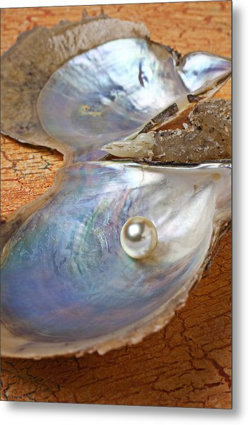 Pearl In Oyster Shell Metal Print