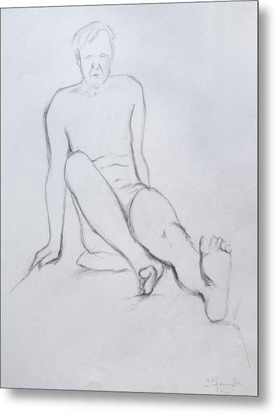 Pencil Sketch 2.2011 Metal Print