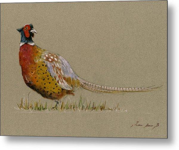 Pheasant Bird Art Metal Print