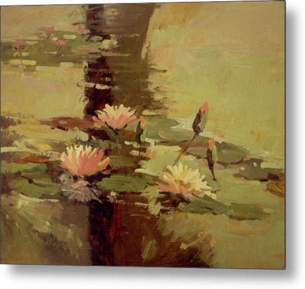 Pond Blossoms - Water Lilies Metal Print