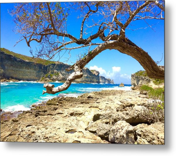 Metal Print featuring the photograph Porte D Enfer, Guadeloupe by Cristina Stefan
