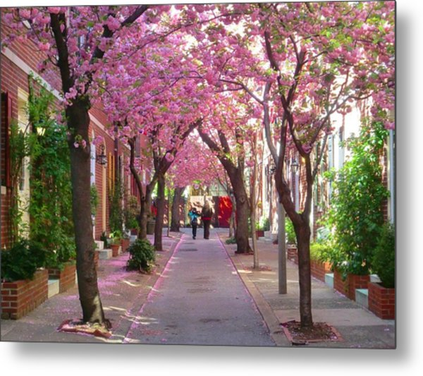 Prettiest Street In Philadelphia Metal Print