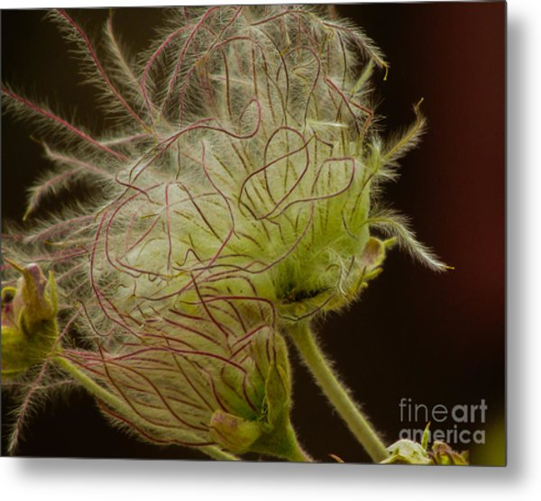 Quirky Red Squiggly Flower 3 Metal Print