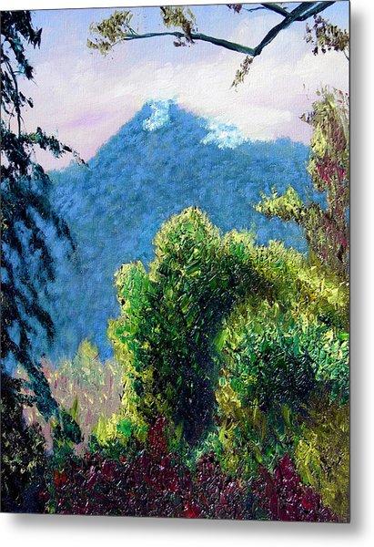 Rain Forrest Mountain Metal Print by Stan Hamilton