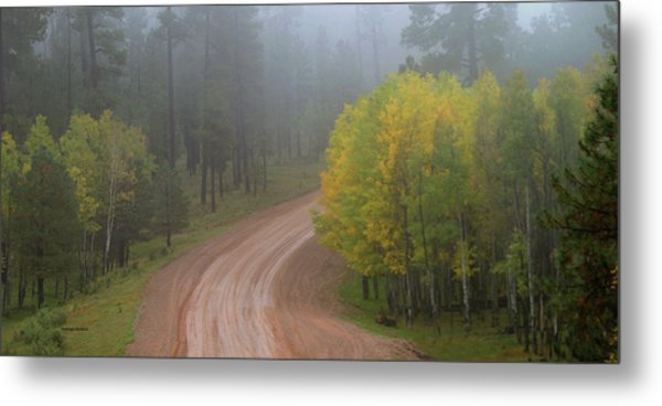 Metal Print featuring the photograph Rim Road by Matalyn Gardner