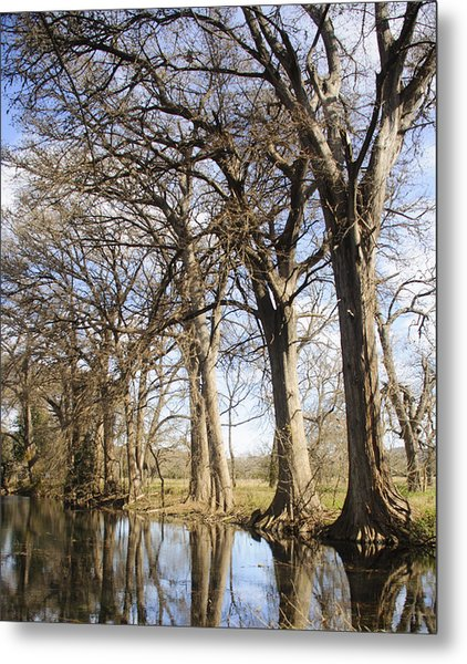 Rio Frio In Winter Metal Print