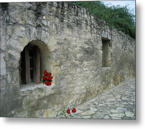 San Antonio Rose Metal Print