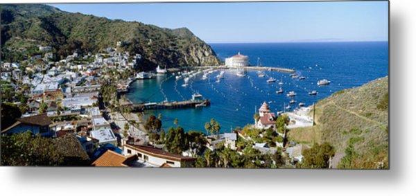 Santa Catalina Island Ca Metal Print