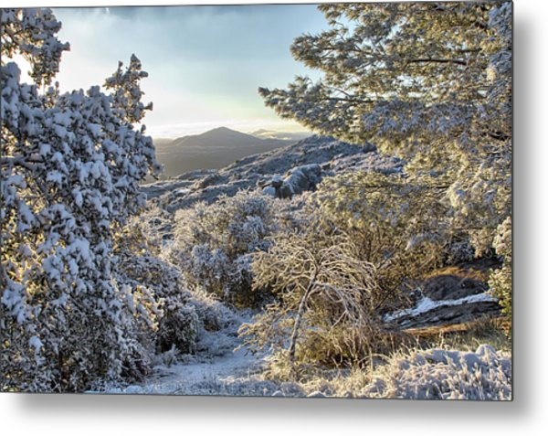 Snow At Sunrise 3 Metal Print by Peter Dyke