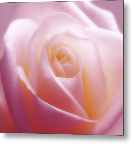 Soft Nostalgic Rose Metal Print