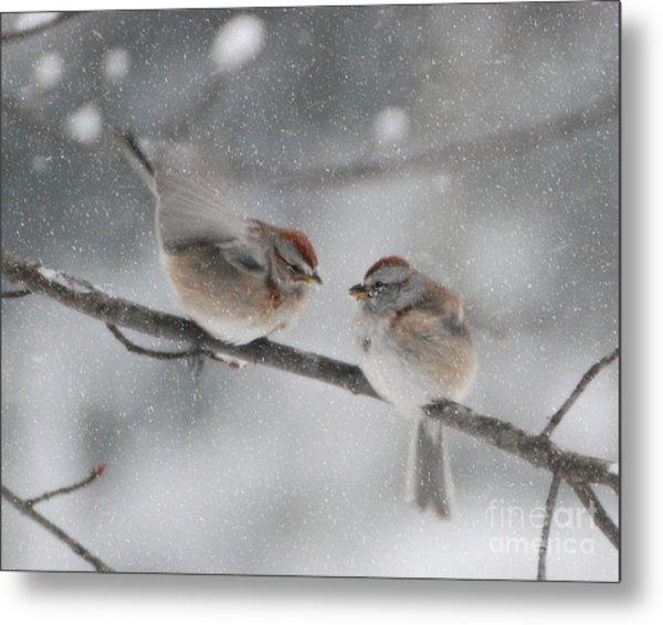 Sparrow Kiss Metal Print
