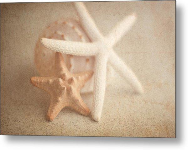 Starfish Still Life Metal Print